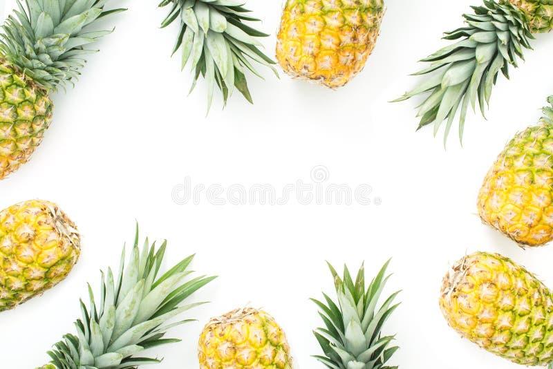 Ανανάδες που πλαισιώνουν ένα άσπρο υπόβαθρο στοκ φωτογραφίες με δικαίωμα ελεύθερης χρήσης