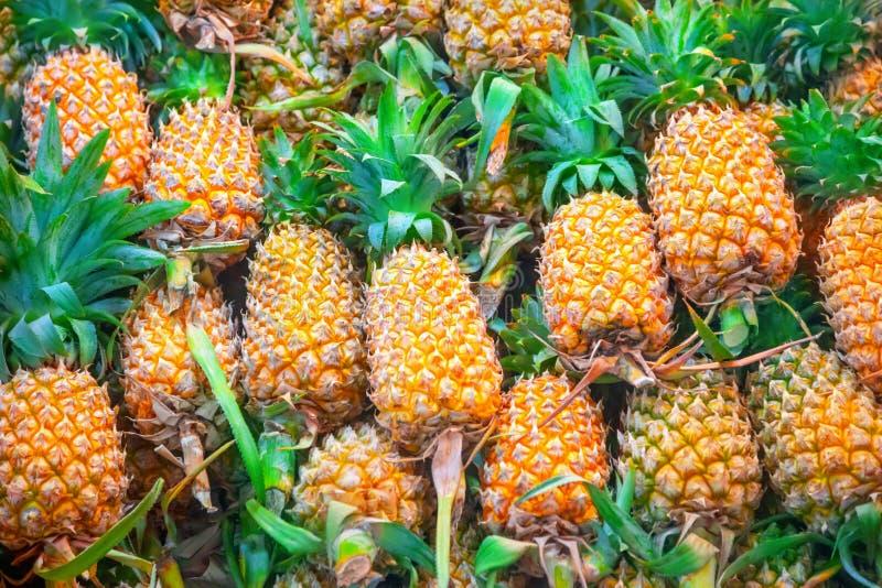 ανανάδες στοκ φωτογραφία