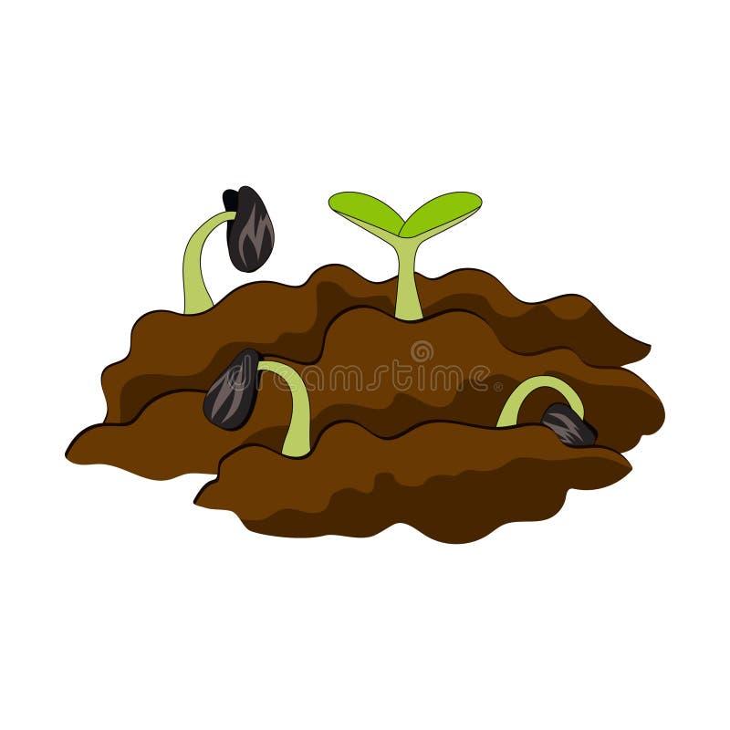 αναπτύσσοντας χώμα φυτών διανυσματική απεικόνιση