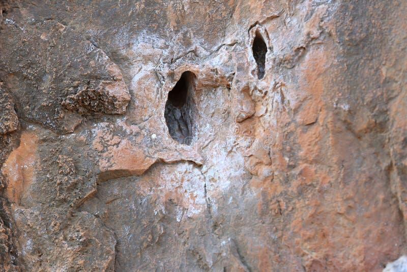 Αναρρίχηση βράχου rockwall στοκ εικόνες με δικαίωμα ελεύθερης χρήσης