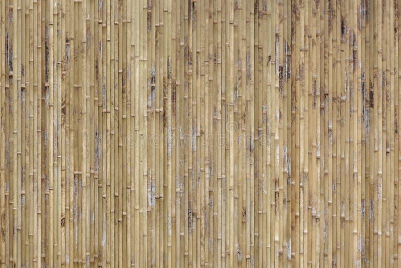 ανασκόπησης διανυσματική λυγαριά σύστασης μπαμπού placemat άνευ ραφής στοκ εικόνες