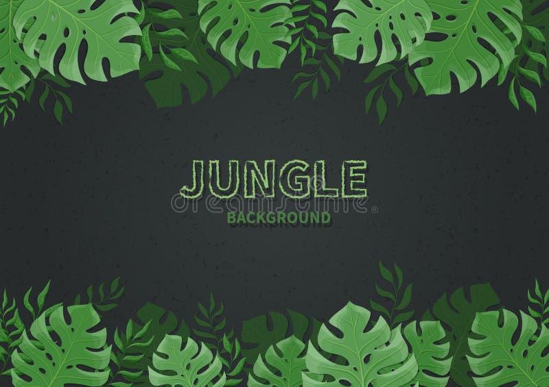 Ανασκόπηση ζουγκλών Τροπικά φύλλα φοινικών, κλάδοι σε ένα μαύρο υπόβαθρο Πράσινο φύλλο monstera Διάστημα κειμένων διανυσματική απεικόνιση