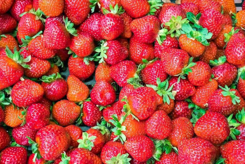 Ανασκόπηση φραουλών στοκ εικόνα