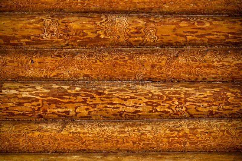 ανασκόπηση grunge ξύλινη στοκ εικόνα