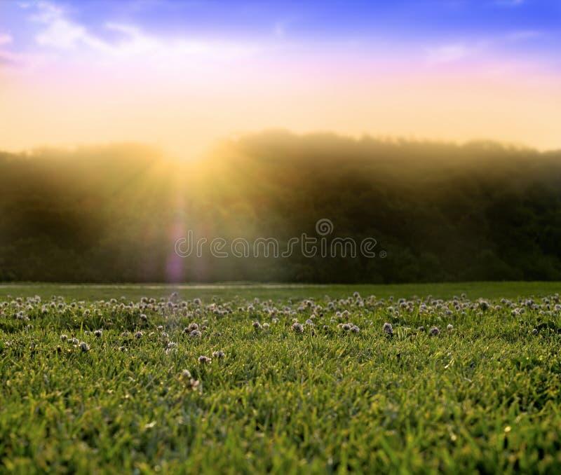 Ανατολή ηλιοβασιλέματος ηλιοφάνειας επίγειων επιπέδων στοκ φωτογραφία με δικαίωμα ελεύθερης χρήσης