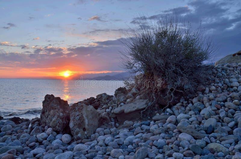 """Ανατολή στην ακτή """"θερμών λιμνών issyk-Kul """", το τοπίο με τις όμορφες πέτρες και το Μπους, βόρειο Tian Shan στοκ φωτογραφία με δικαίωμα ελεύθερης χρήσης"""