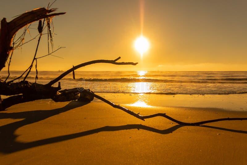Ανατολή στην παραλία στοκ εικόνες με δικαίωμα ελεύθερης χρήσης