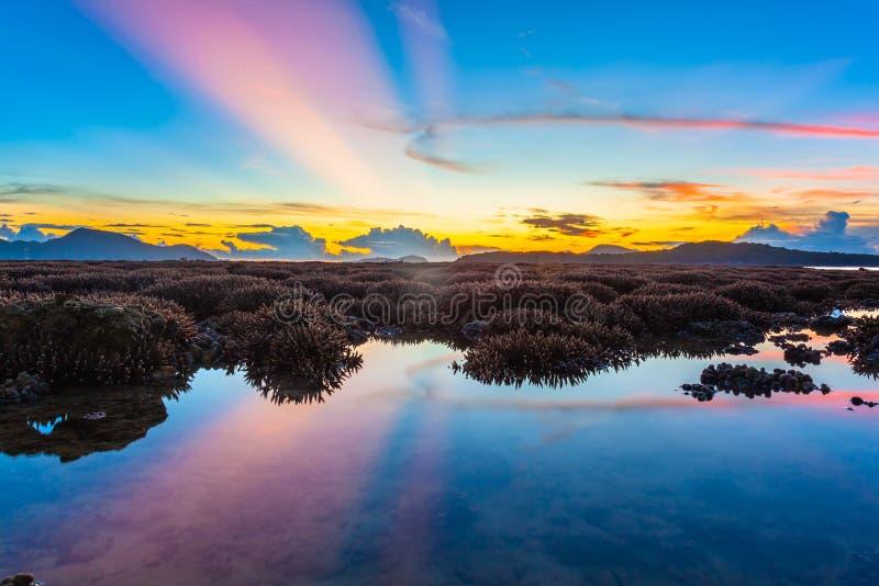 ανατολή τοπίου επάνω από την κοραλλιογενή ύφαλο Η κοραλλιογενής ύφαλος προκύπτει από το νερό σε μειωμένη στάθμη ύδατος στοκ φωτογραφίες