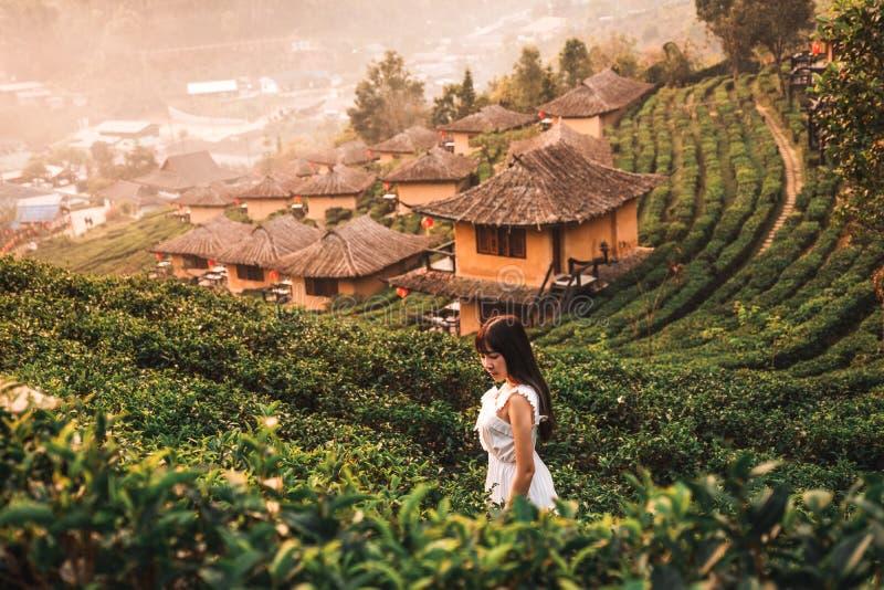 Ανατολή του ηλίου στο κρασί Lee Rak Ταϊλάνδης, Κινέζικος οικισμός, Mae Hong Son, Ταϊλάνδη στοκ εικόνες