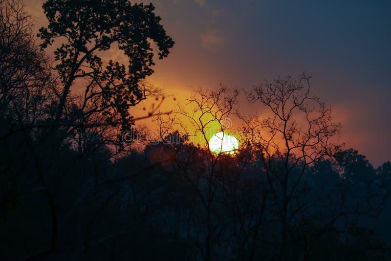 Ανατολή jim corbett στο εθνικό πάρκο στοκ εικόνες