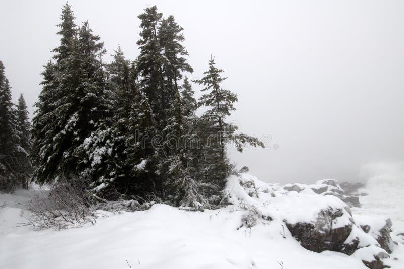ανατολικός χειμώνας ακτώ&n στοκ φωτογραφίες με δικαίωμα ελεύθερης χρήσης