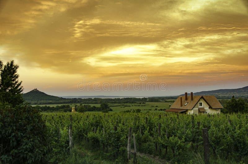 Ανατολή κοντά στη λίμνη Balaton στην Ουγγαρία διανυσματική απεικόνιση