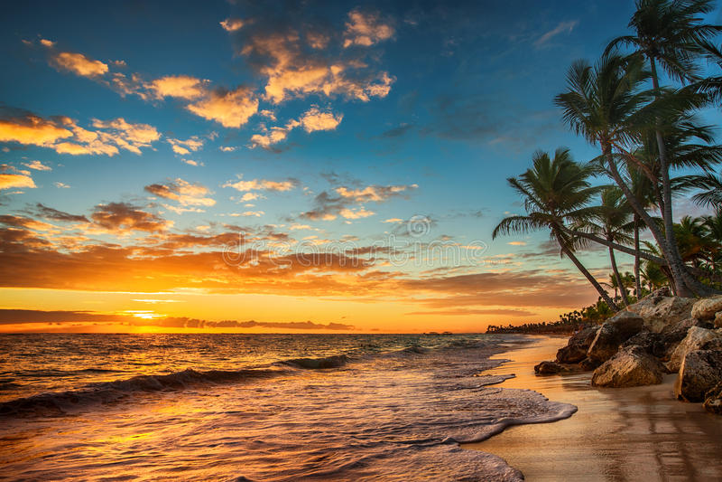 Ανατολή σε ένα τροπικό νησί Τοπίο του τροπικού isl παραδείσου στοκ εικόνες με δικαίωμα ελεύθερης χρήσης