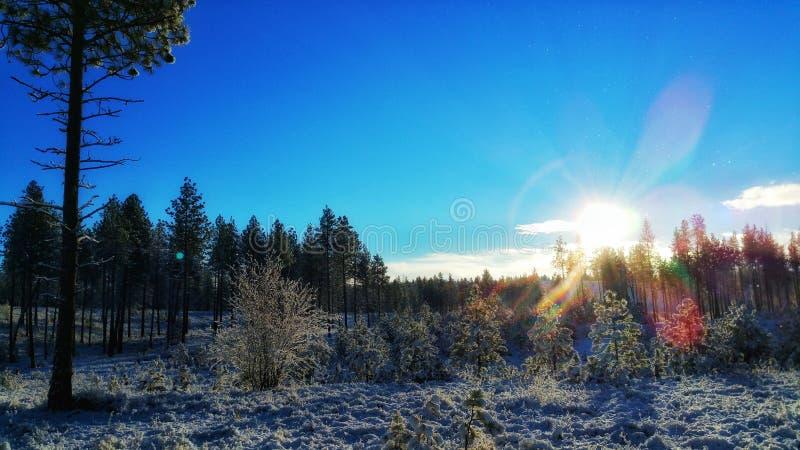 Ανατολή σε ένα χιονώδες δροσερό πρωί στοκ εικόνες