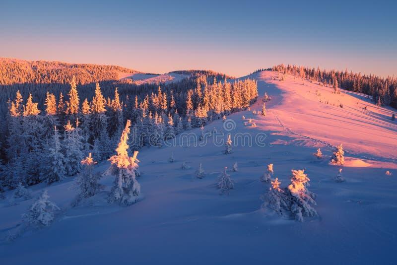 Download Ανατολή στα βουνά το χειμώνα Στοκ Εικόνα - εικόνα από χιονώδης, δέντρα: 62703403