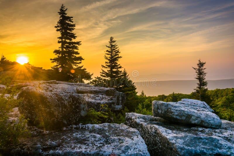 Ανατολή στην κονσέρβα βράχων αρκούδων, στην αγριότητα γρασιδιών της Dolly, Monon στοκ εικόνα