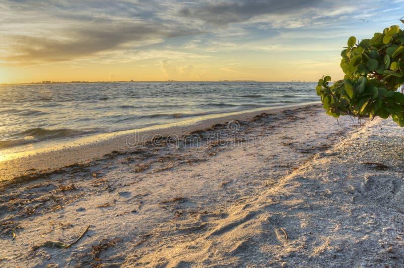 Ανατολή στο νησί Sanibel στοκ φωτογραφία με δικαίωμα ελεύθερης χρήσης