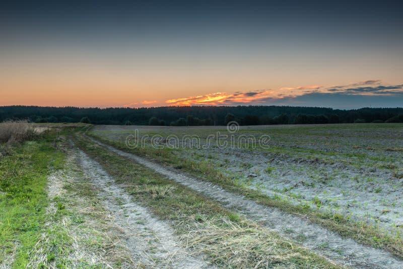 ανατολή της Ρωσίας πεδίων altai στοκ φωτογραφία με δικαίωμα ελεύθερης χρήσης