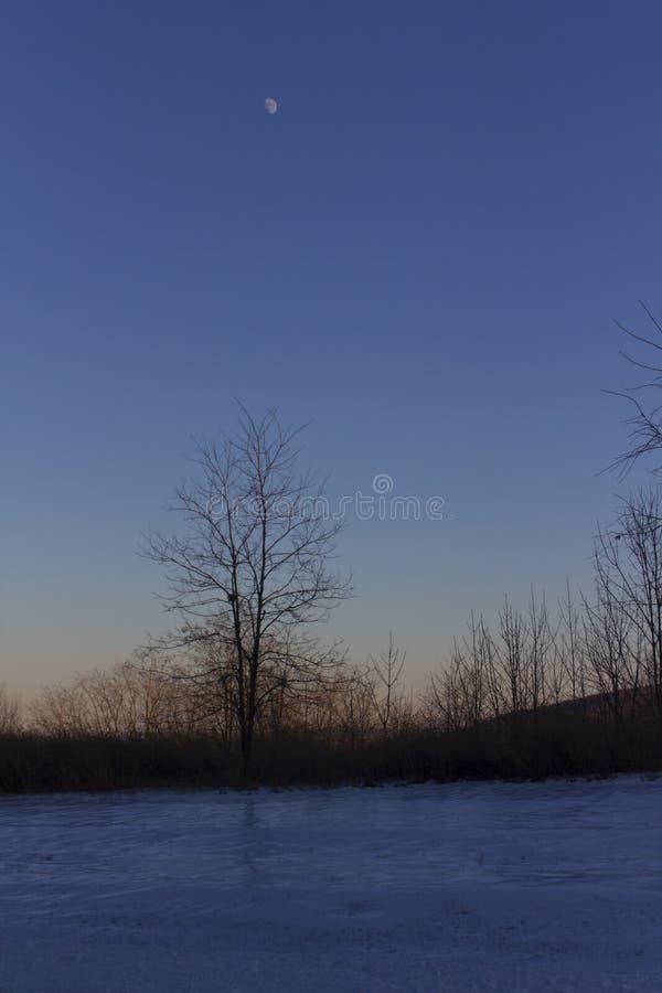 Ανατολή του φεγγαριού πέρα από το χιόνι στοκ εικόνα με δικαίωμα ελεύθερης χρήσης