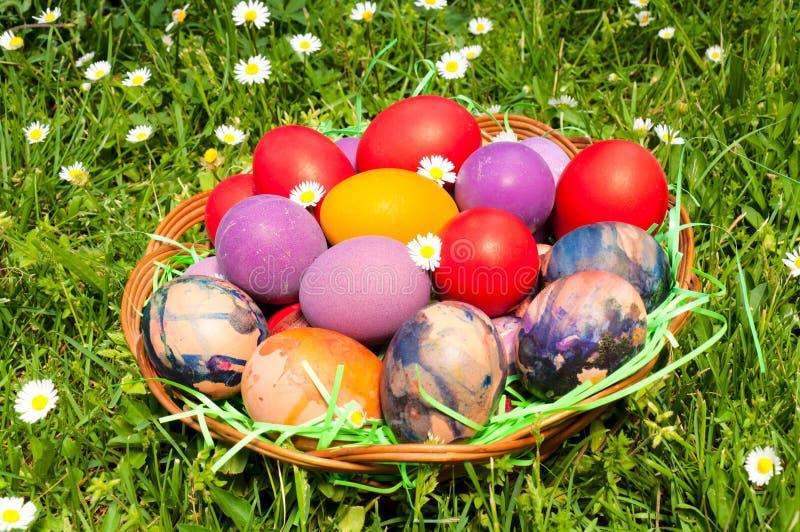 Ανατολικά αυγά στοκ εικόνες με δικαίωμα ελεύθερης χρήσης
