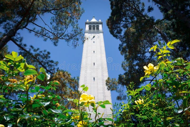 Ανατρέχοντας από τη βάση του πύργου Sather το καμπαναριό σε ένα υπόβαθρο μπλε ουρανού, UC κόλπος του Μπέρκλεϋ, Σαν Φρανσίσκο, Καλ στοκ εικόνες