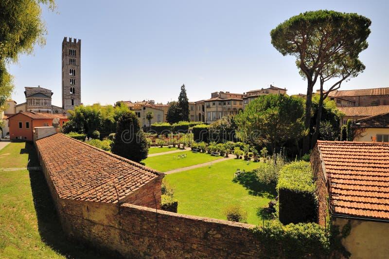 Αναλαμπή Lucca στοκ φωτογραφίες με δικαίωμα ελεύθερης χρήσης