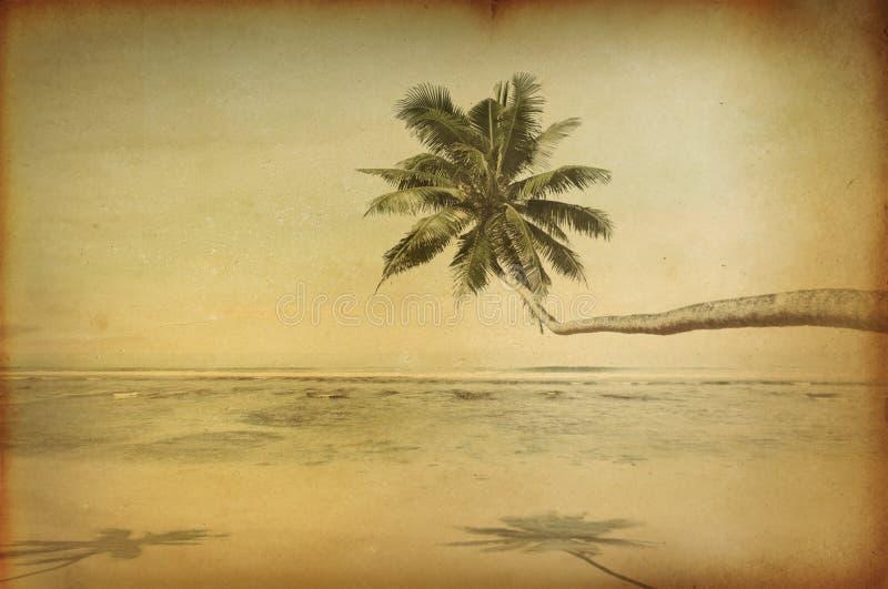 Αναδρομική τροπική όμορφη παραλία με το φοίνικα ελεύθερη απεικόνιση δικαιώματος