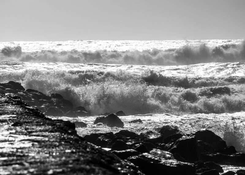 Ανδρεία της θάλασσας ενάντια στους βράχους σε γραπτό στοκ φωτογραφίες με δικαίωμα ελεύθερης χρήσης