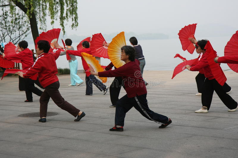 ανεμιστήρας χορού στοκ εικόνες με δικαίωμα ελεύθερης χρήσης