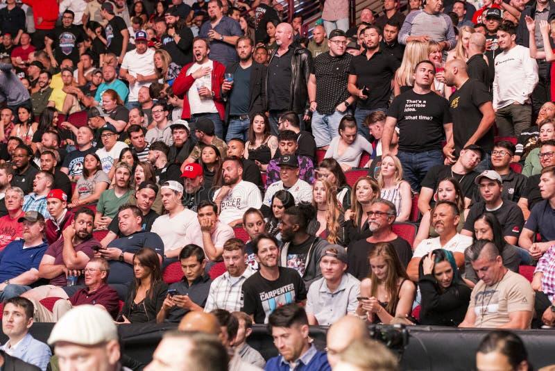 Ανεμιστήρες MMA στοκ φωτογραφίες με δικαίωμα ελεύθερης χρήσης