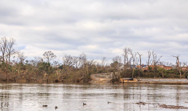 Ανεμοστρόβιλος ζημίας δέντρων που χτύπησε Wetumpka, Αλαμπάμα στοκ φωτογραφία με δικαίωμα ελεύθερης χρήσης