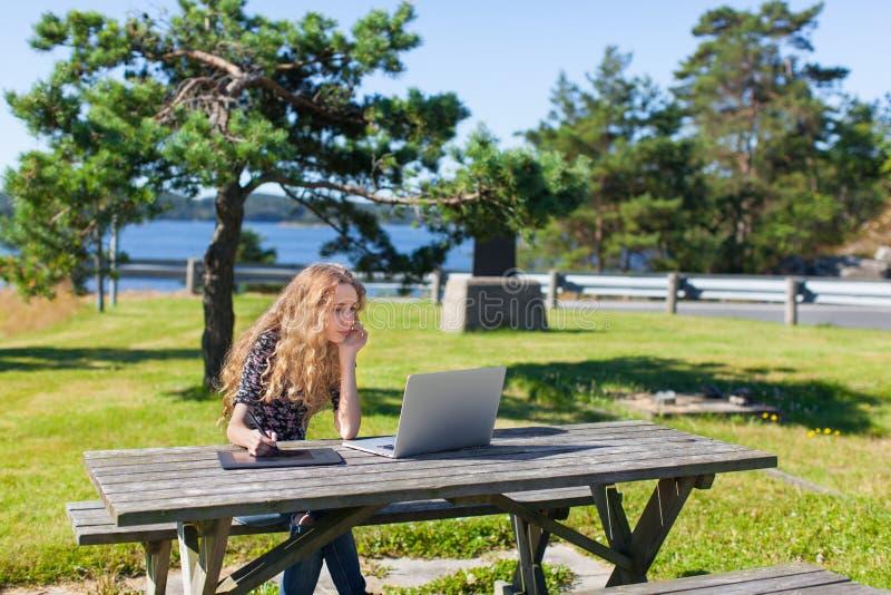 Ανεξάρτητο κορίτσι που εργάζεται στο lap-top στα όμορφα τοπία στοκ εικόνα