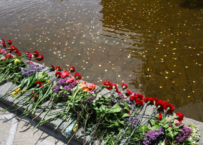 Ανθίζει κοντά στη λίμνη των δακρυ'ων στοκ εικόνα με δικαίωμα ελεύθερης χρήσης