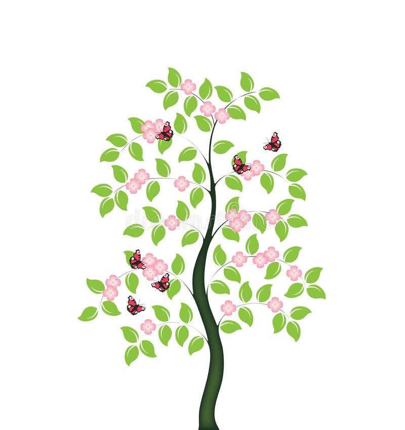 ανθίζοντας δέντρο απεικόνιση αποθεμάτων