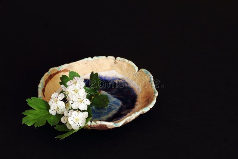 Ανθίζοντας κλαδίσκος elderberry στο αρχικό τυποποιημένο κεραμικό πιατάκι που διακοσμείται με την ωκεάνια επίδραση λούστρου στο μα στοκ εικόνα