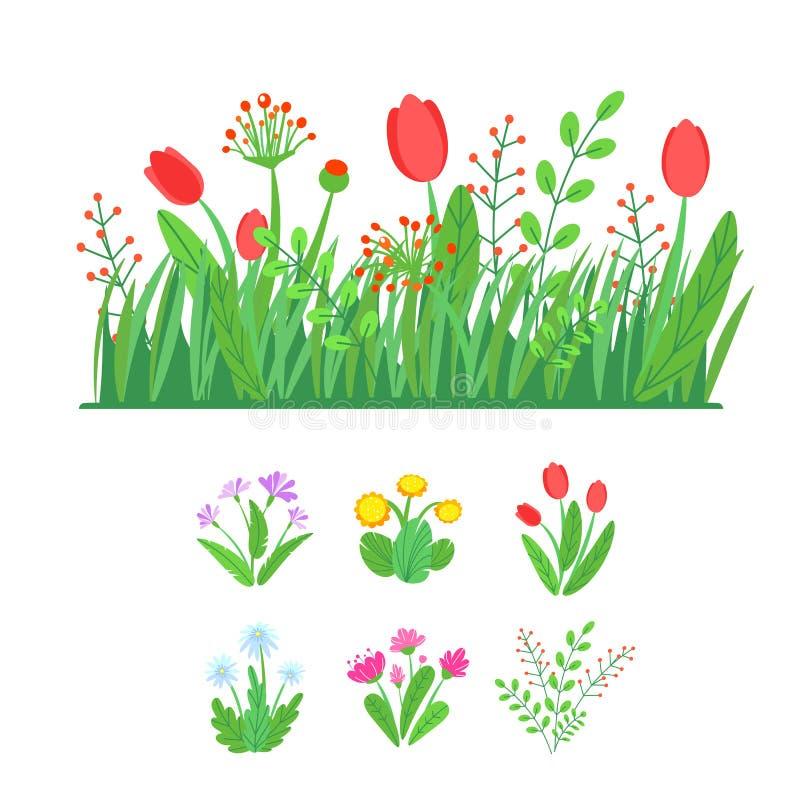 Ανθίζοντας λουλούδια κήπων άνοιξη με το διάνυσμα συνόρων χλόης Απλή απεικόνιση ανθοδεσμών εγκαταστάσεων Floral άνοιξη μόδας διανυσματική απεικόνιση