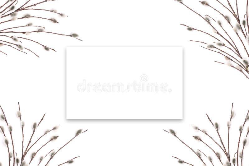 Ανθίζοντας μίσχοι δέντρων σε ένα άσπρο υπόβαθρο Ευχετήρια κάρτα προτύπων ή έμβλημα διαφήμισης Ελεύθερου χώρου στο πλαίσιο για το  απεικόνιση αποθεμάτων