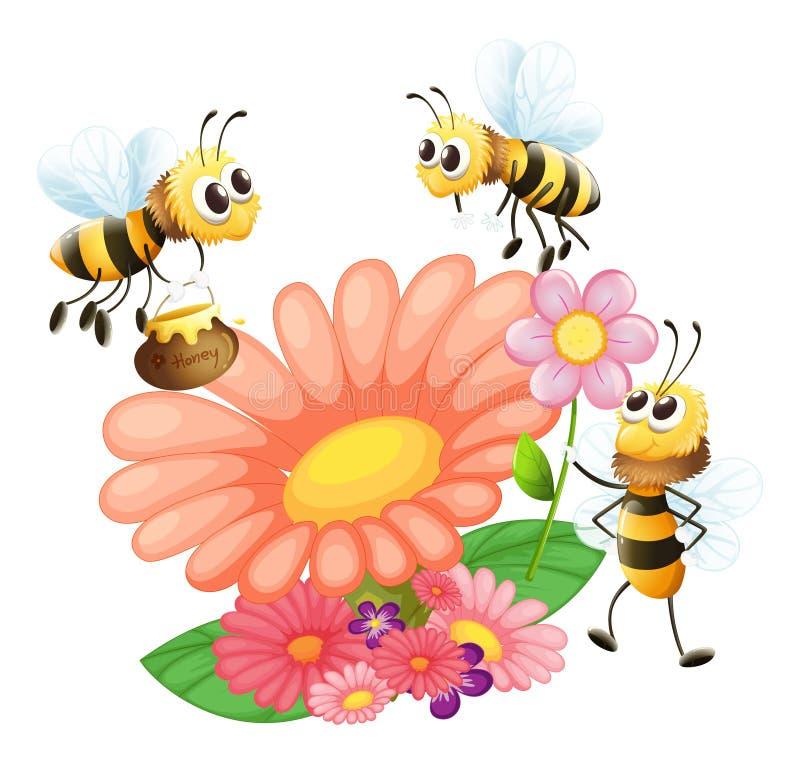 Ανθίζοντας λουλούδια με τις μέλισσες διανυσματική απεικόνιση