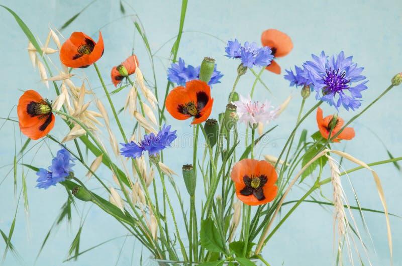 Ανθοδέσμη λουλουδιών παπαρουνών με τις κόκκινα παπαρούνες, cornflower, τα wildflowers και spikelets βρωμών με τα πράσινα φύλλα στ στοκ εικόνες