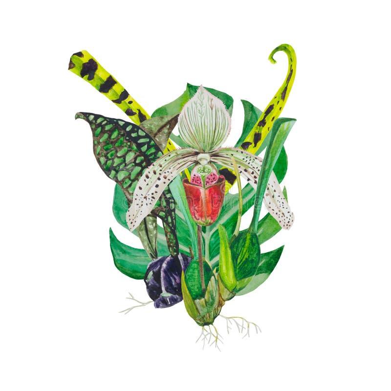 Ανθοδέσμη της ορχιδέας λουλουδιών ελεύθερη απεικόνιση δικαιώματος