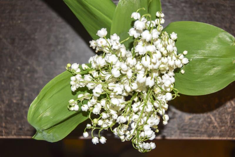 Ανθοδέσμη των άσπρων κρίνων λουλουδιών των πράσινων φύλλων κοιλάδων στοκ φωτογραφία
