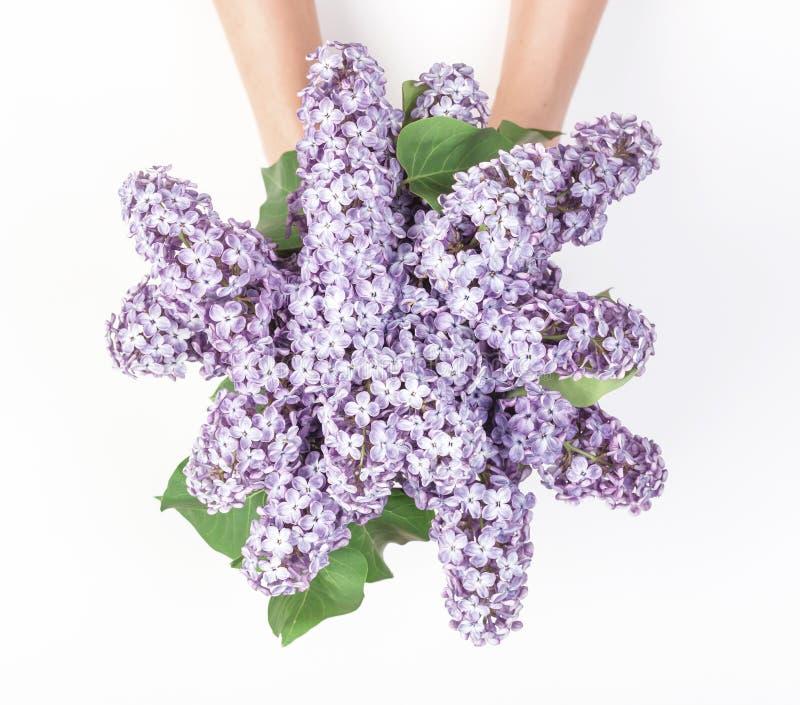 Ανθοδέσμη των ιωδών λουλουδιών άνοιξη στο χέρι γυναικών ` s που απομονώνεται στο άσπρο υπόβαθρο Τοπ όψη στοκ εικόνα