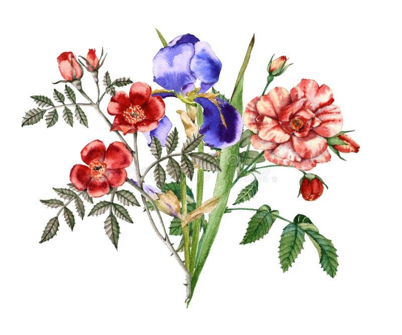 Ανθοδέσμη των λουλουδιών και των τριαντάφυλλων ίριδων η ανασκόπηση απομόνωσε το λευκό ελεύθερη απεικόνιση δικαιώματος