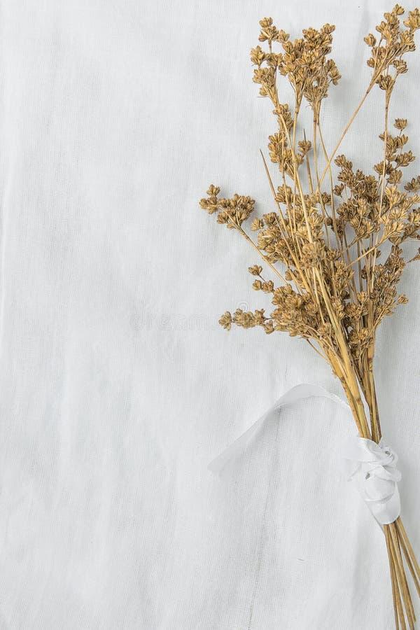 Ανθοδέσμη των ξηρών μπεζ καφετιών λουλουδιών που δένονται με την κορδέλλα μεταξιού στο άσπρο υπόβαθρο υφάσματος λινού ιαπωνικό ύφ στοκ εικόνες