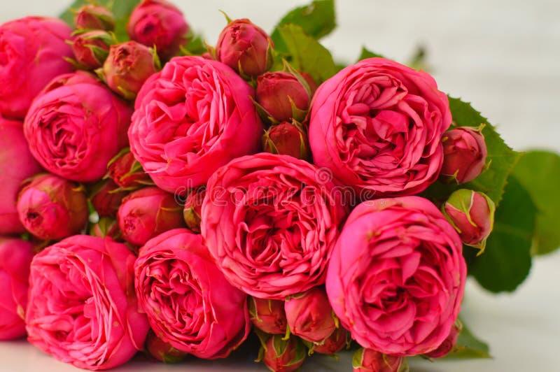 Ανθοδέσμη των ρόδινων peones και των τριαντάφυλλων στοκ εικόνες