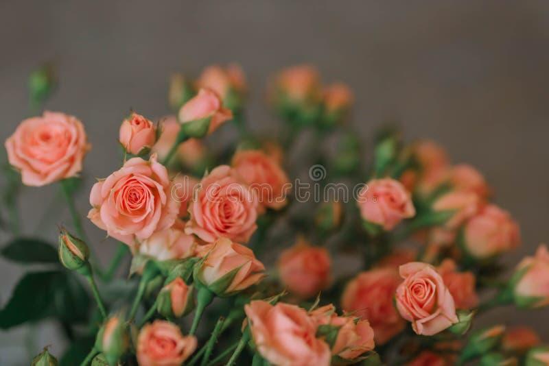 Ανθοδέσμη των τριαντάφυλλων του χρώματος κοραλλιών σε ένα μπλε υπόβαθρο στοκ εικόνες