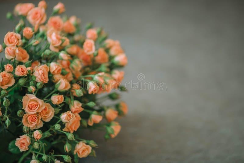Ανθοδέσμη των τριαντάφυλλων του χρώματος κοραλλιών σε ένα μπλε υπόβαθρο στοκ φωτογραφία με δικαίωμα ελεύθερης χρήσης