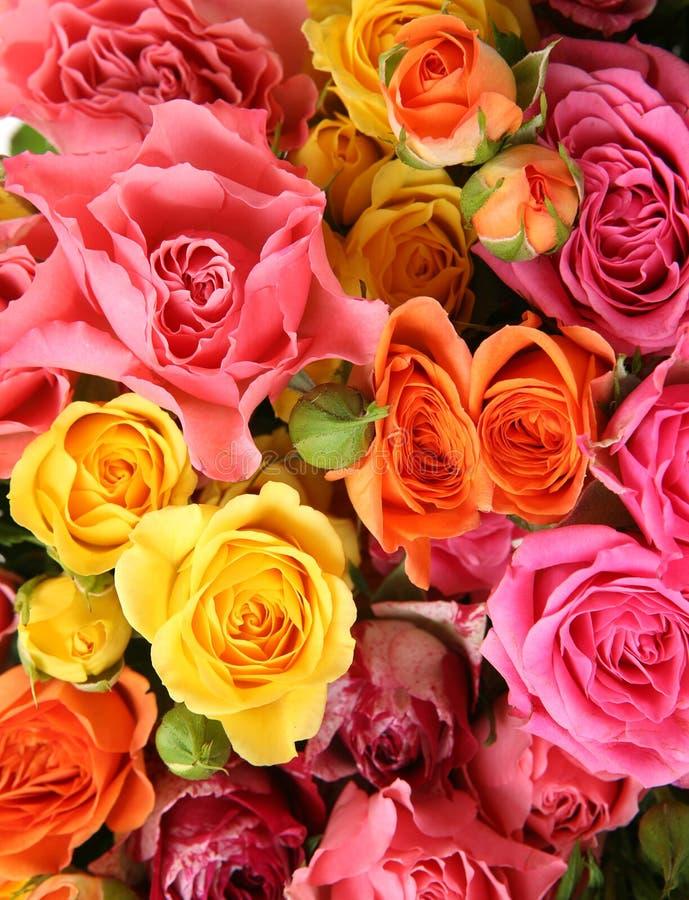 Ανθοδέσμη των χρωματισμένων τριαντάφυλλων στοκ φωτογραφία με δικαίωμα ελεύθερης χρήσης