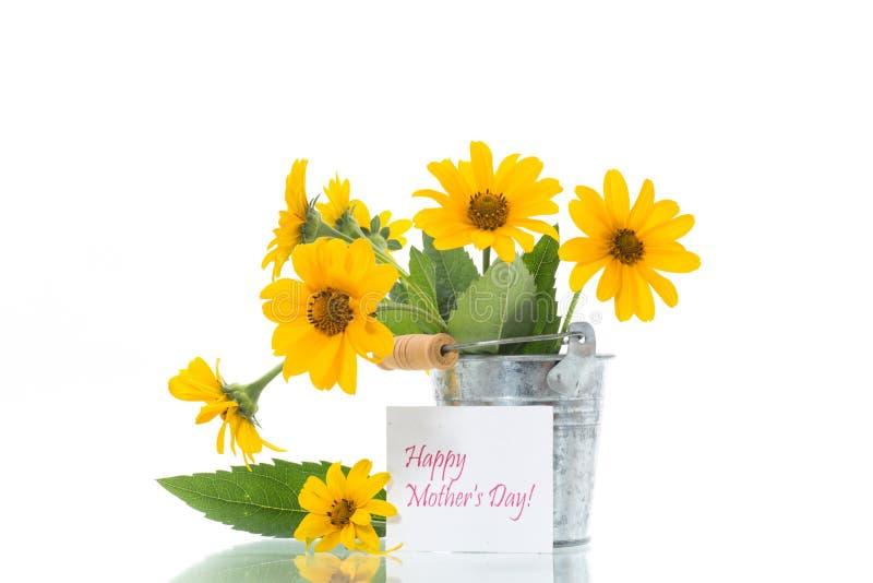 Ανθοδέσμη των όμορφων ανθίζοντας κίτρινων μαργαριτών που απομονώνονται στο λευκό στοκ φωτογραφία με δικαίωμα ελεύθερης χρήσης
