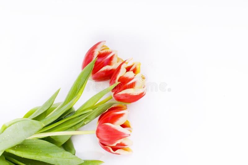 Download ανθοδέσμη στοκ εικόνες. εικόνα από μήνυμα, εσείς, λουλούδια - 13190242